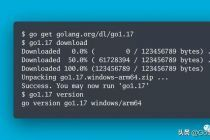 Go1.17 正式发布了,Go1.18 重新开放开发