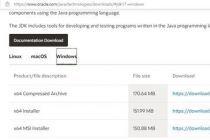 Java SE 17 JDK 的安装