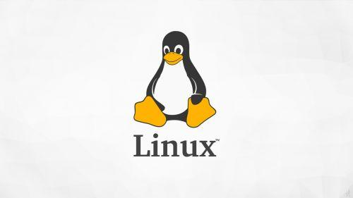 从Windows到鸿蒙——操作系统的前世今生  操作系统 第4张