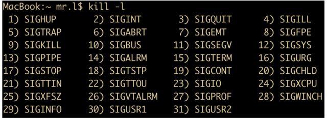 全方位剖析 Linux 操作系统,太全了  linux系统 第10张