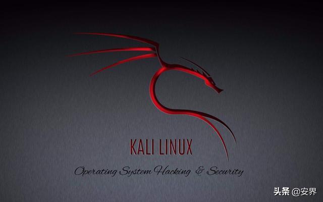黑客常说的Kali Linux 是什么?附Kali 系统安装详细教程  linux教程 第1张