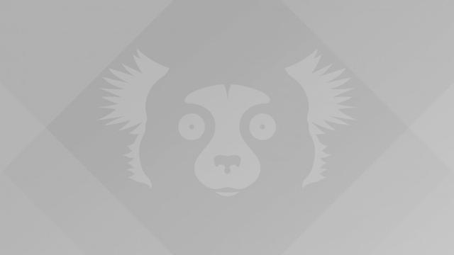 Ubuntu Linux 21.10官方壁纸现已提供下载 最高8192×4608分辨率  linux 第4张