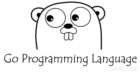 如何学习go语言?  Golang 第1张