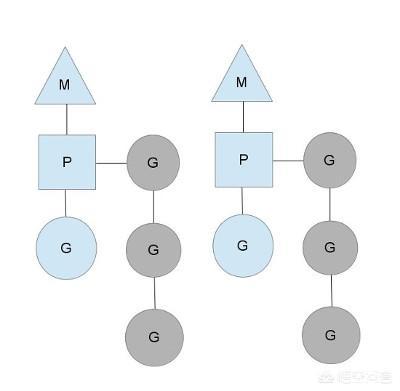 Golang是单线程模型还是多线程模型?  Golang 第1张